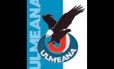 logo Ulmeana
